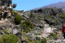 Kilimanjaro 14_15