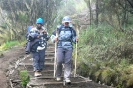 Kilimanjaro 14_19