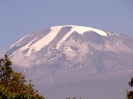 Kilimanjaro 14_1
